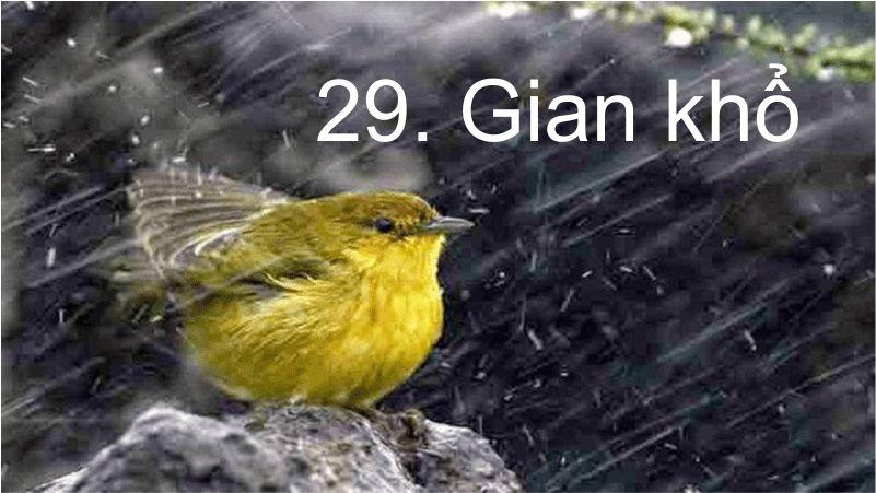 29. Gian khổ- Đường Hy Vọng