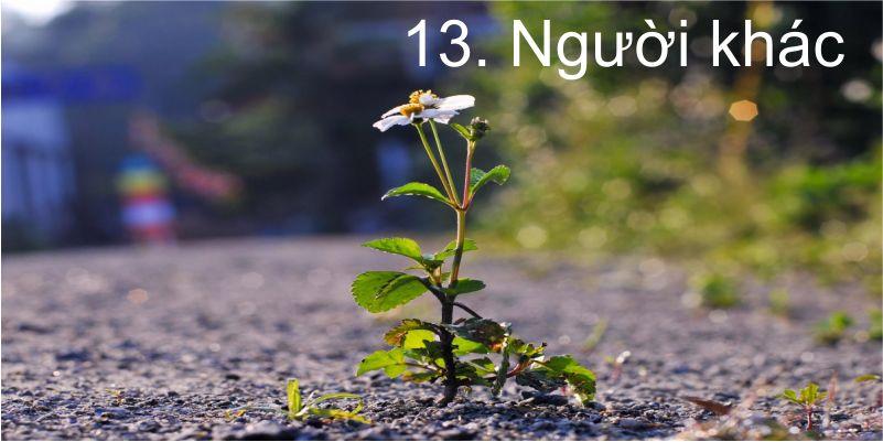 13. Người khác